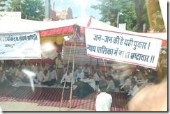 India 2010 -  Jaipur  , 15 de septiembre   46