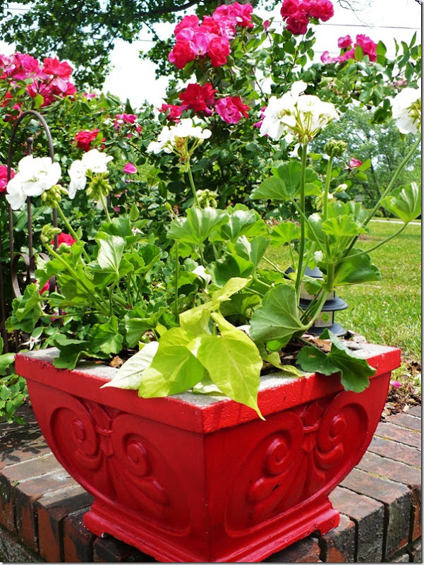 concreteplanter