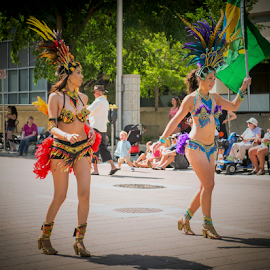 Caribbean Arts Festival by Joseph Law - News & Events Entertainment ( parade, beautiful caribbeandancerts, caribbean festival, 30th annual, in edmonton city )