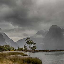 Milford Sounds by Nick Mcilroy - Landscapes Weather ( water, plant, canon, hills, hdr, grass, 5d mark lll, cloudscape, lake, landscape, photo, photography, new zealand, photos, eos, mountains, south island, www.nicksplace.co.nz, outdoors, nicksplace, fiordland, milford sounds )