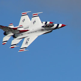 USAF Thunderbirds by Amara Dempsey - Transportation Airplanes ( novice, air force, airplane, aircraft, transportation, entertainment, military, air show, airshow,  )