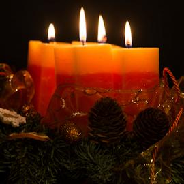 Advent lights by Péter Dudás - Public Holidays Christmas ( advent, ligths, santa, x-mas, koszorú, gyertya, karácsony )