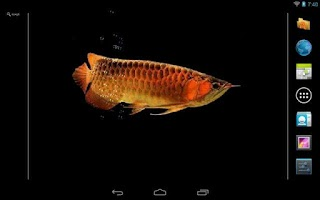 Screenshot of Aquarium Arowana LWP