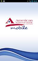 Screenshot of American National Bank