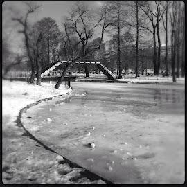 by Suzana Dordea - Instagram & Mobile iPhone ( winter, park, ice, snow, weather, trees, lake, bridge, frozen )