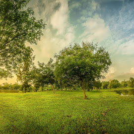 Morning at Tasik Seksyen 7 by Khairul Aidil - Landscapes Weather