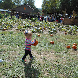 Pumpkin Patch by Jim Gilbert - Novices Only Portraits & People