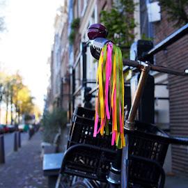 Tassels by Vijay Balasundaram - Transportation Bicycles