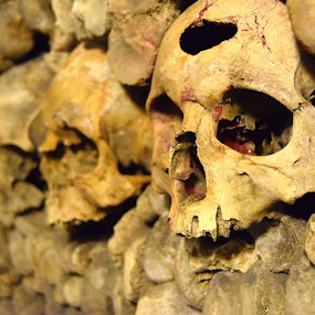 The Catacombs by David Montemayor - Buildings & Architecture Public & Historical ( skulls, paris, death, catacombs, wax,  )