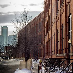 Upriver by Jarrod Kudzia - Buildings & Architecture Other Exteriors ( condo, michigan, rencen, sky, brick, renaissance center, trees, detroit )
