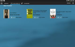 Screenshot of E-boeken in de bib