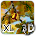 Autumn Leaves in HD Gyro 3D XL