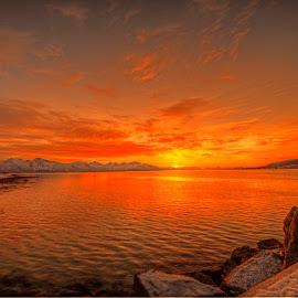 Arctic sunset by Marius Birkeland - Landscapes Sunsets & Sunrises ( clouds, reflection, sky, sunset, arctic )