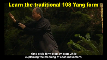 Screenshot of Yang Tai Chi for Beginners 1
