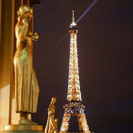 Palais de Chaillot by Howard Ferrier - City,  Street & Park  Night ( illuminated, lights, paris, eiffel tower, statue, trocadero, night, palais de chaillot, gold )