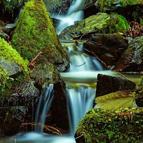 Fountain Of Joy by Nuno Miguel Valente - Landscapes Waterscapes ( serra da lousã, aldeias do xisto, lousã, catarredor, candal, aldeias serranas,  )