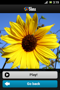 Flowers Puzzle – MPW - screenshot