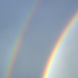 Double Rainbow by Leif Anderson - Landscapes Weather ( colorado, summer, double, rainbow, johnstown )