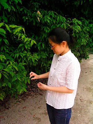 needlework butterfly b-shirt camisa シャツ shirt