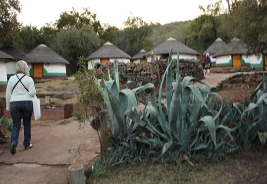 South Africa. Johanesburg, Kruger park, pretoria 596