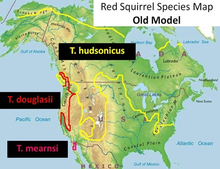 Red Squirrel Species Map Old Model