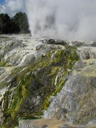 Rotorua 015