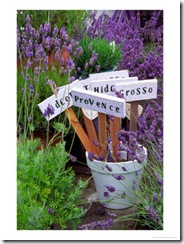 Lavender-Stakes-with-Names-and-Lavender-in-Pots