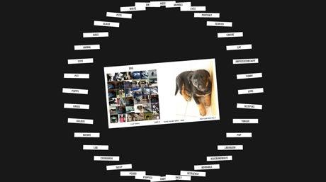 tag browser, ricerca visuale delle immagini di Flickr