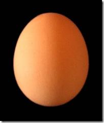 Tenemos hambre. ¿que podemos hacer con un huevo?
