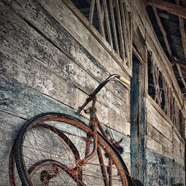by Indra Aryadi - Transportation Bicycles