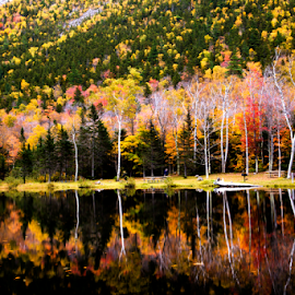 Reflections by Daphne Tan - Landscapes Mountains & Hills ( autumn, colors, foliage )