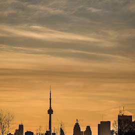 Toronto at Sunset by Jennifer Bacon - City,  Street & Park  Skylines ( building, skyline, witner, toronto, sunset, cn tower, city )