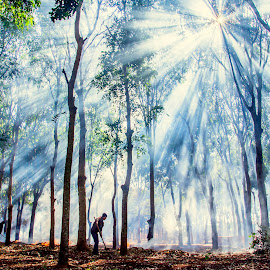 Morning sunlight  by Hoài Quốc - Landscapes Forests ( foggy, travel, sunlight, landscape, people )