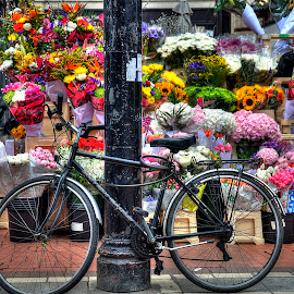 Bike and Flowers by Robert Seals - Transportation Bicycles ( bouquet, photograph, ireland, store, vendor, dublin, sunflower, tourism, irish, travel, photo, photography, bicycle, bike, roses, flowers )