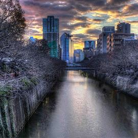 A View of Toyko by Matt Shell - City,  Street & Park  Skylines ( skyline, japan, meguro, tokyo, river )