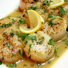 Seared Scallops with Tarragon-Butter Sauce