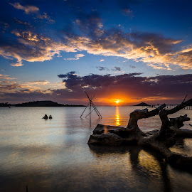 Tree Trunk by Samuel Tobing - Landscapes Cloud Formations ( clouds, sky, sunset, sea, batam )
