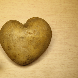 Heart shaped potato by Зоран Милојковић - Food & Drink Fruits & Vegetables ( srca, srce, heart, others, via, enters, krompir, desk, the, love, among, food, on, potato, u obliku, shaped )