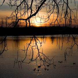 Riverside, Tulsa OK Sunset by James Grier - Landscapes Sunsets & Sunrises ( sunset, tosell, nightscape )