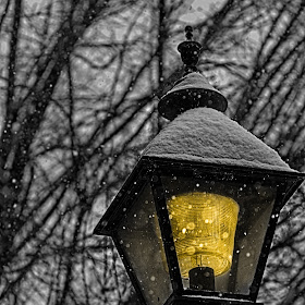 RomanDAPhotography-DSC_0086_HDR.jpg