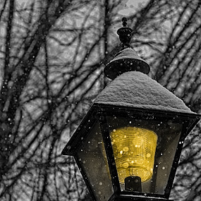 Snow Light by RomanDA Photography - Buildings & Architecture Architectural Detail ( lights, snow, trees,  )