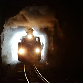 The ghost by George Marcu - Transportation Trains ( maramures, train, romania, tunnel, steam,  )