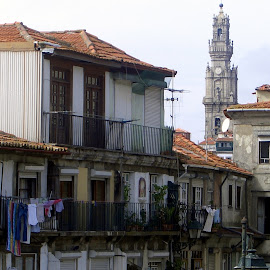 Oporto by João Ascenso - City,  Street & Park  Historic Districts