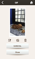 Screenshot of SUMZZAL - Animated GIF Camera