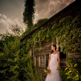Waiting by Jody Johnson - Wedding Bride ( barn, sunflowers, photorad, bride, rustic )
