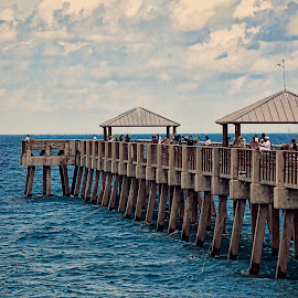 Juno Beach Pier by Sandy Friedkin - Buildings & Architecture Bridges & Suspended Structures ( pier, ocean, fishing, beach, people,  )