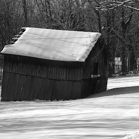An old barn taken yesterday in Butler County Kentucky. by Angela Faith - Illustration Buildings ( photgraphy, countryside, art, black & white, barns )