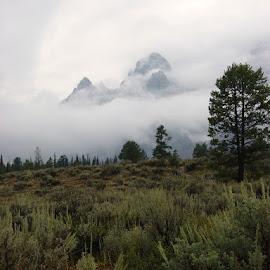 Grand Tetons National Park by Stephen Terakami - Novices Only Landscapes ( grand tetons national park cloudy rain,  )