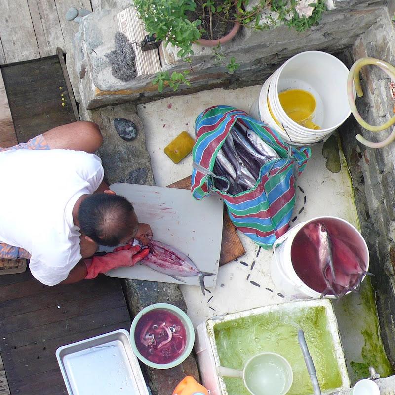 [遊記] 蘭嶼之旅 Day 3:女人魚早餐、浮潛、開元港跳海