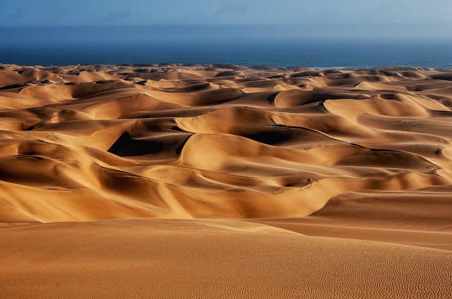 Namib Desert by Johan Jooste Snr - Landscapes Deserts ( sand, dunes, namib desert, desert, namibia )